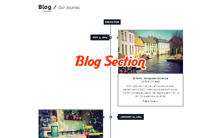 Blog Section