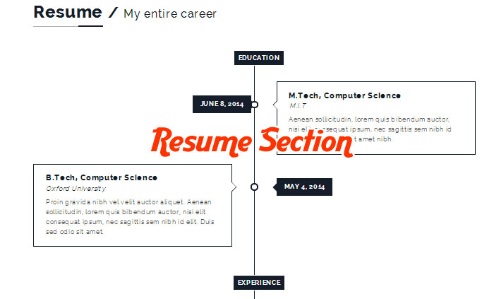 Resume Section